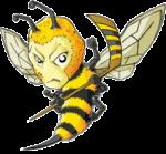 RAINY RIVER BEES.com